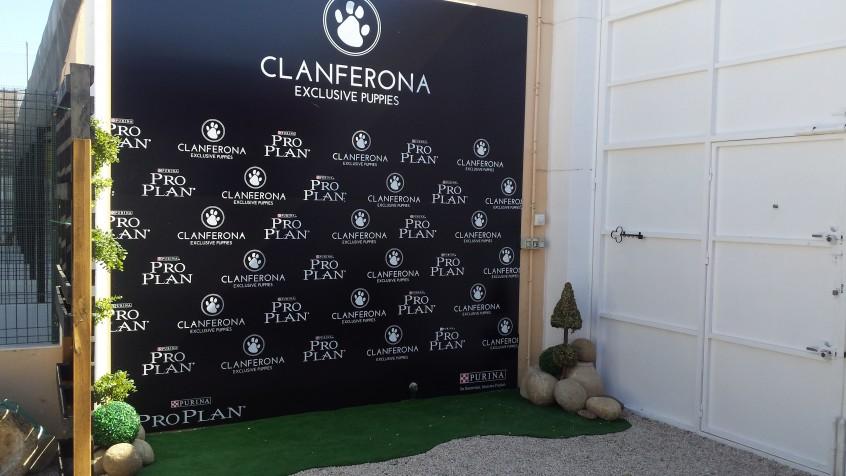 Centro canino
