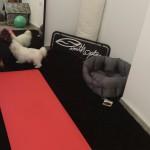 Zona Fitness 8
