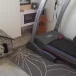 Zona Fitness 2