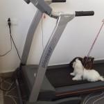 Zona Fitness 12