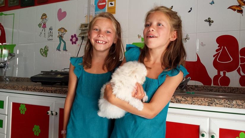 beneficios-convivir-perros-pequenos-con-ninos