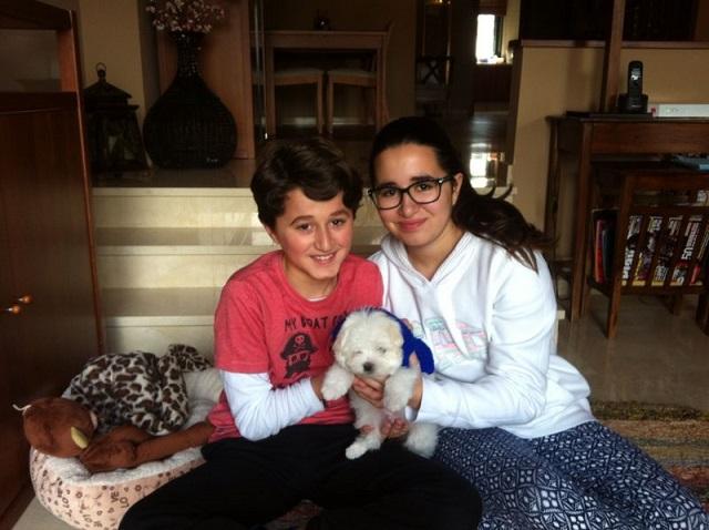 Beneficios para los niños de convivir con perros pequeños 3